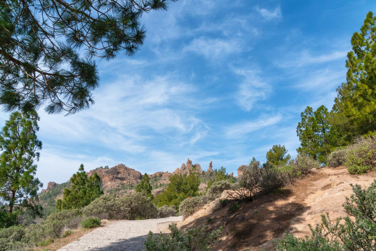 The best hiking trails on Gran Canaria