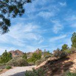 Las mejores rutas de senderismo de Gran Canaria
